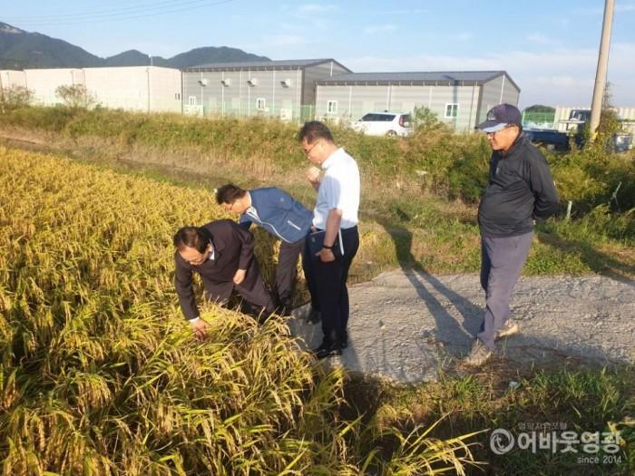 김준성 영광군수, 태풍 피해현장 위로 방문 2.JPG