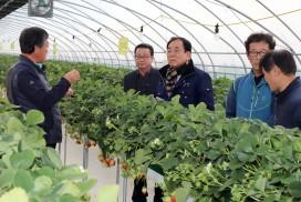 영광군 김준성 군수, 농업현장 방문 농업인 격려