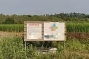 법성 소재 P농업회사 환경오염 진원지?