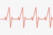영광군, 뇌졸중 예방을 위한 '심방세동 무료 선별검사'
