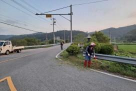 영광읍, 주요 도로변 풀베기 작업 추진