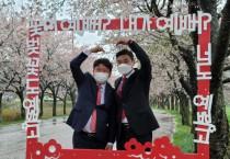 영광JC, 벚꽃사진콘테스트 개최···불갑면 일원 포토존 설치해