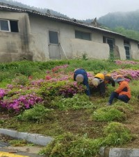 영광군, 하반기 지역공동체일자리 신규사업 참여자 모집